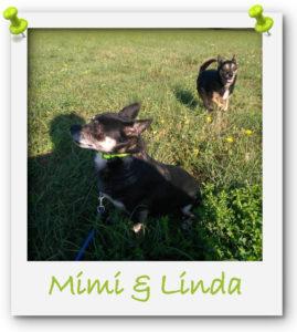 Mimi und Linda
